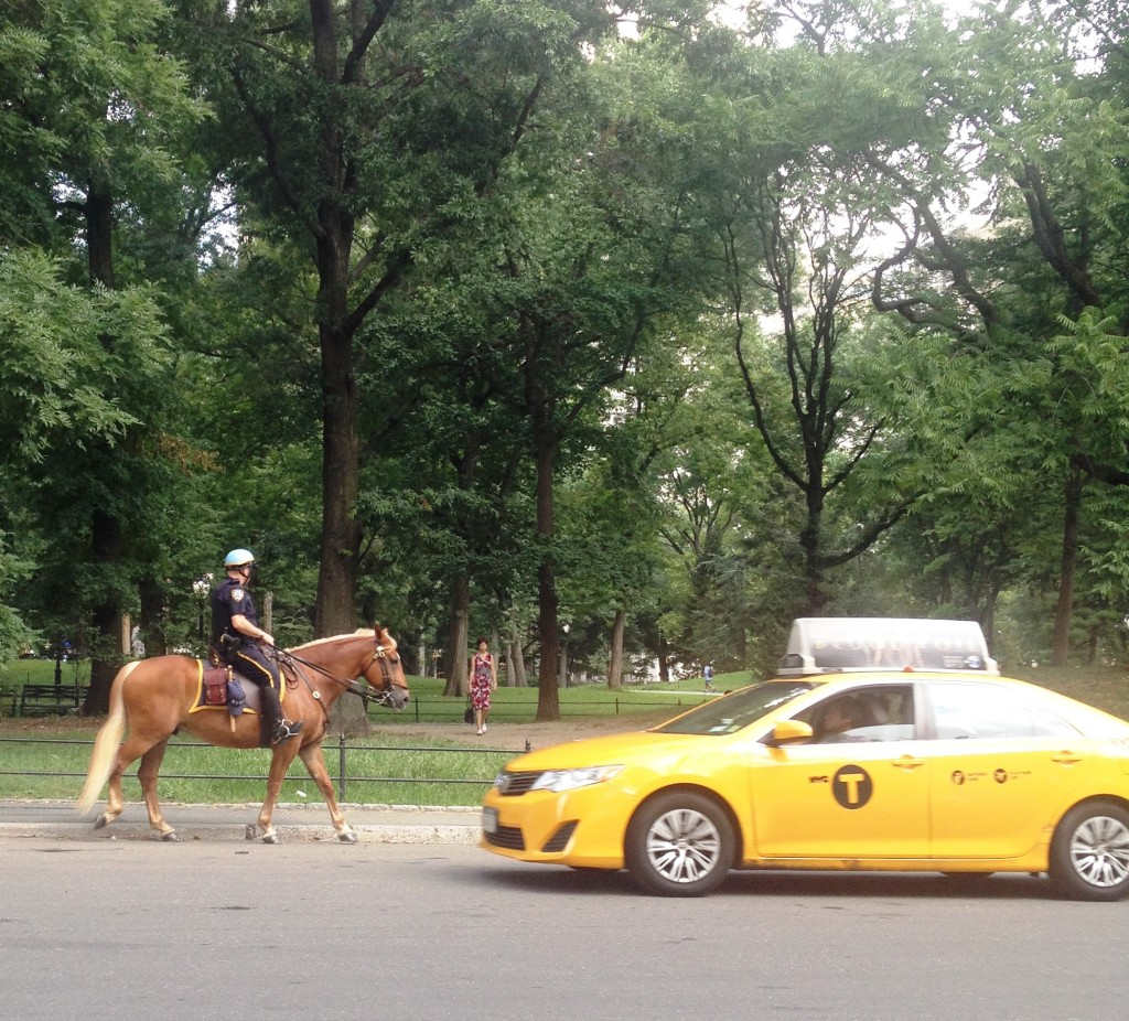 New York yellow cab and horseback police